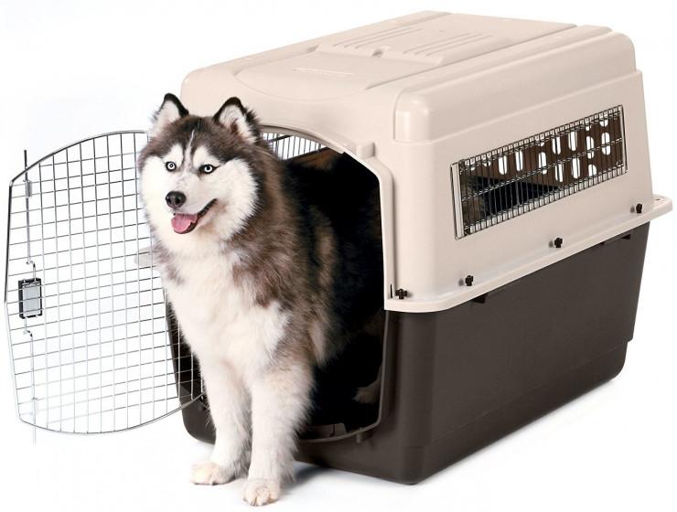 Собачья клетка для перелетов