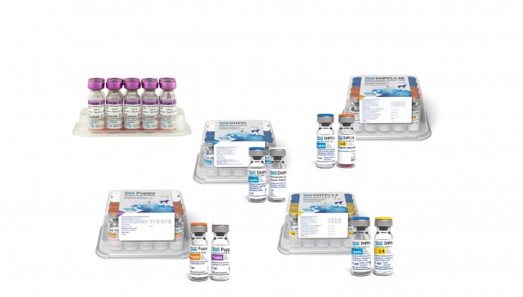 биокан схема вакцинации