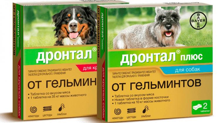 Дронтал для собак с мясом