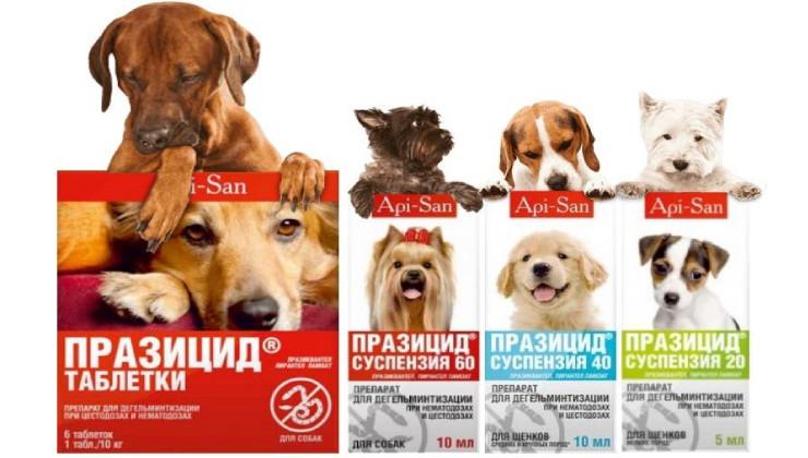 Празицид для собак Апценна