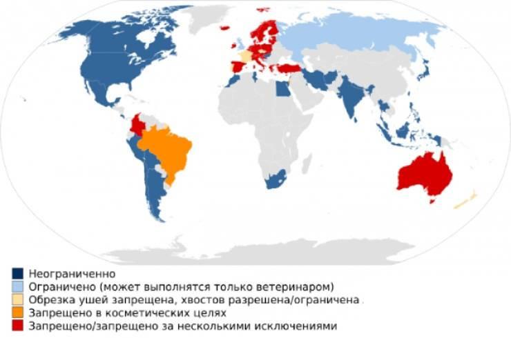 Запреты на купировку в мире (карта)
