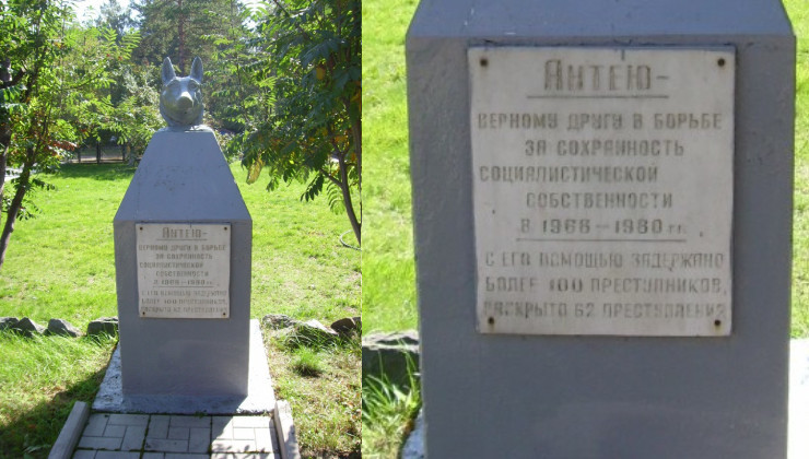 Антею, Новосибирск