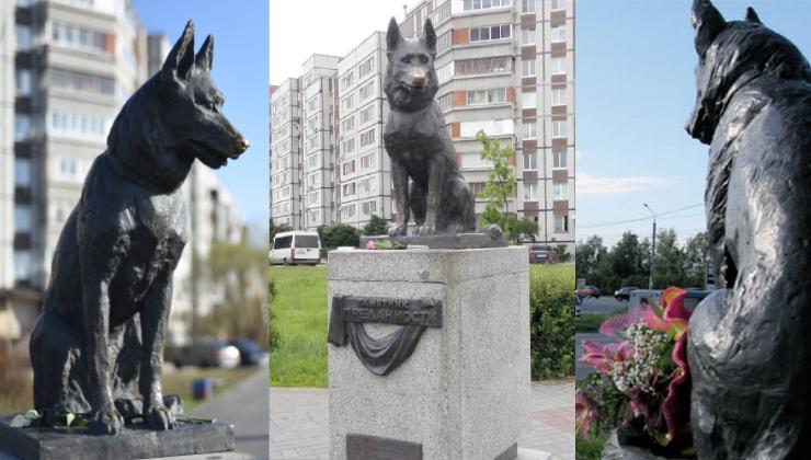 Памятник преданности, Тольятти