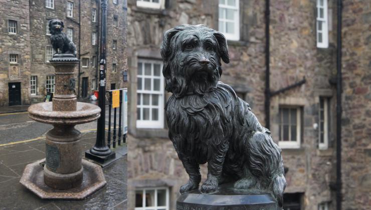 Псу Бобби, Эдинбург