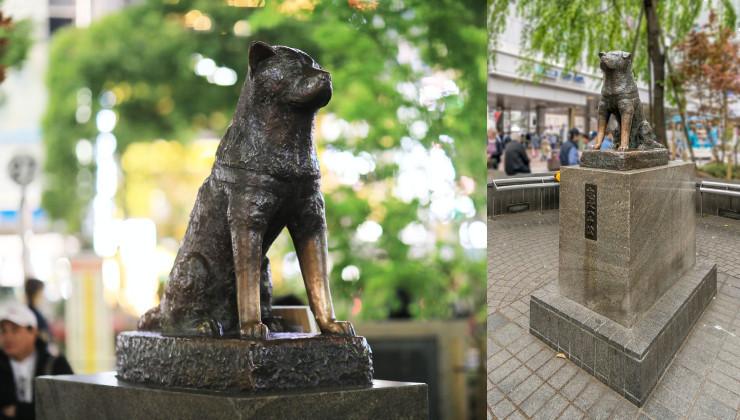 Памятник Хатико в Сибуро Япония