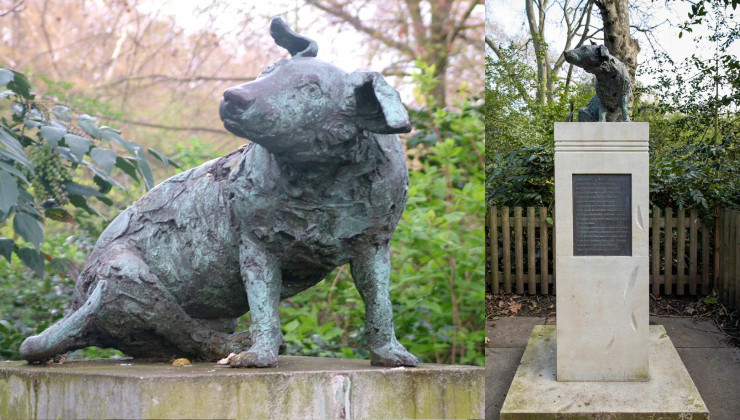 памятник коричневому псу