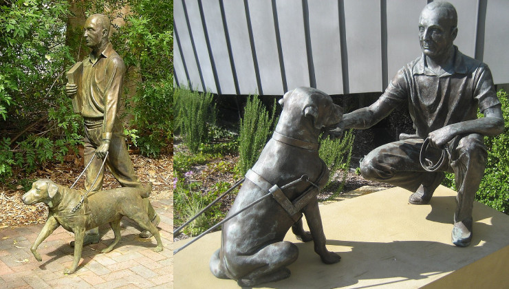 Первая собака поводырь в Австралии