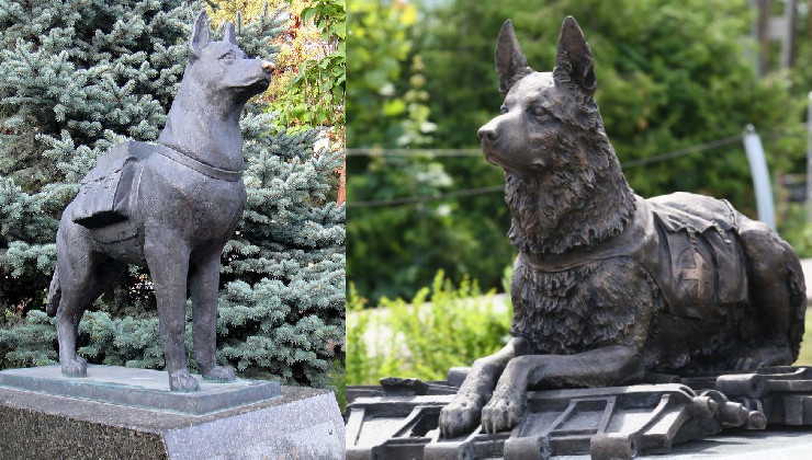 Памятникам фронтовым собакам