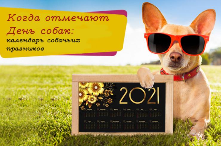 Когда отмечают День собак: календарь собачьих праздников